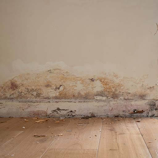 damp property solutions rising damp-3