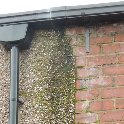 Damp proofing Damaged Guttering